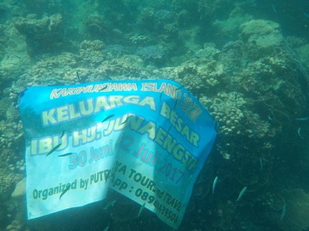 Paket Wisata Karimunjawa Tour